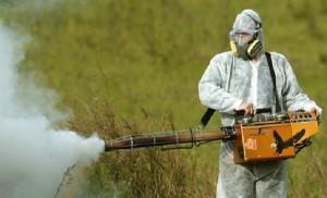 irrorazione DDT