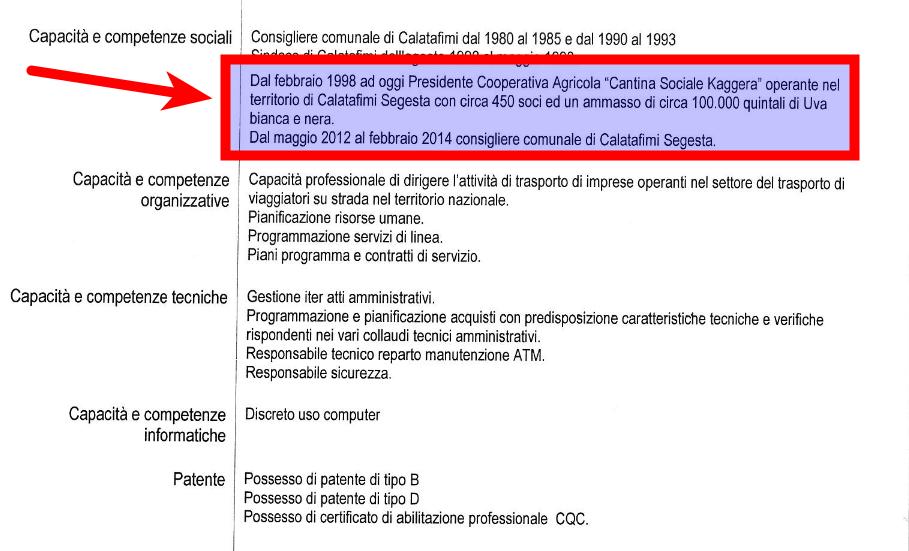 Sito ATM - CV Salvatore Barone